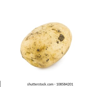 New dirty potato isolated on white background close up