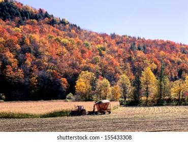 New England Autumn Farming
