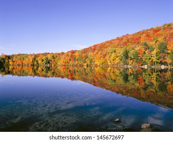 New England Colorful Trees Pond in Autumn