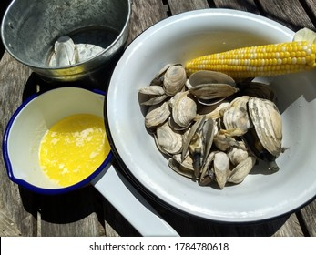 New England Steamer clams and steamed corn, in white enamel bowl, with melted butter and discard bucket