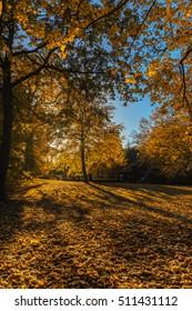 New Garden park view in Potsdam, Germany