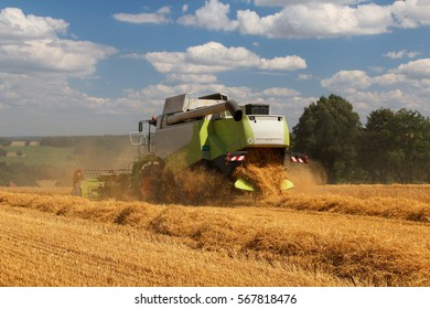 New grain combine working on field during hot summer harvest, blue cloudy sky on background, rare perspective, straw in rows, bio agriculture