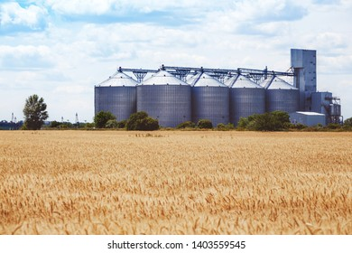 new grain elevator on the background of a wheat field