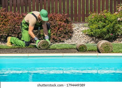 New Grass Turfs Installation Along Side of Garden Outdoor Swimming Pool. Caucasian Gardener in His 40s Assembly Grass From Rolls. Landscaping Industry.