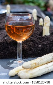 New harvest of  white asparagus vegetable in spring season and glas rose wine, white heads of asparagus growing up from the ground on farm close up