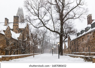 NEW HAVEN, CT, USA - MARCH 14, 2017: Library Walk at Yale University during a winter snowstorm on March 14, 2017.