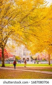 NEW HAVEN, CT, USA - NOVEMBER 3, 2018: Beautiful fall colors outside Sterling Memorial Library at Yale University on November 3, 2018. Sterling Memorial Library is Yale's largest library.