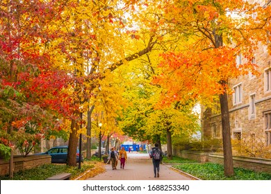 NEW HAVEN, CT, USA - NOVEMBER 3, 2018: Beautiful fall colors along Rose Walk outside Sterling Memorial Library at Yale University on November 3, 2018.