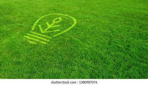 New Ideas on Fresh Green Lawn