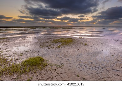 New land being created in the mud-flats of a tidal marsh in the Waddensea on the Groningen coast in the Netherlands