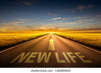 New Life text on highway motivational concept