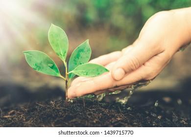 Dirt Cares Images, Stock Photos & Vectors   Shutterstock