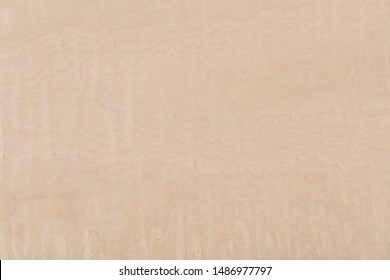 New light beige maple veneer background as part of your design. High quality texture in extremely high resolution.