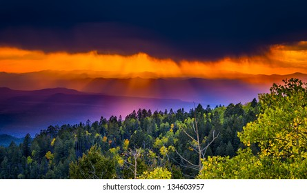 New Mexico fall mountain sunset  featuring golden aspens and rays of orange sunlight