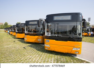 New modern busses for public transportation are shown in a row from the front in a parking lot.