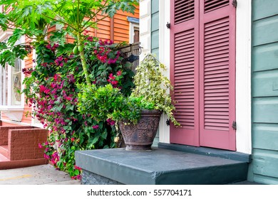 New Orleans colorful house fronts and lush tropical plants. Traditional shotgun architectural style of homes seen in the historic neighborhoods of New Orleans.