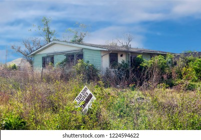 New Orleans, LA, US - February 8, 2008 - in the aftermath of Hurricane Katrina, 3 years later, a house an overgrown yard, scheduled for demolition