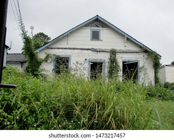 New Orleans, Louisiana - August 27, 2010: A weed covered dilapidated New Orleans home post Hurricane Katrina