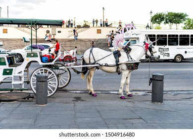 New Orleans, USA - April 22, 2018: Old town Decatur street by Jackson square in Louisiana city with horse carriage guided tour on buggy