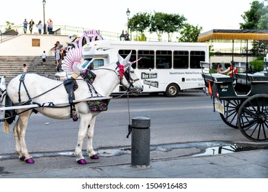 New Orleans, USA - April 22, 2018: Old town Decatur street by Jackson square in Louisiana city with horse carriage guided tour