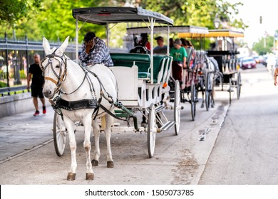 New Orleans, USA - April 23, 2018: Decatur street by Jackson square in historic city of Louisiana with horse carriage buggy tour guide with people in summer