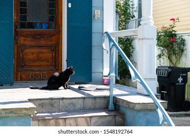 New Orleans, USA - April 23, 2018: Street in old historic Garden district in Louisiana famous town city with blue small house and black cat on porch eating