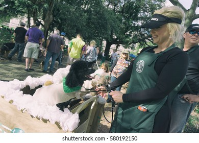 NEW ORLEANS, USA - FEBRUARY 12, 2016: Woman and her dogs dressed as coffee shop waitress and coffee cups for the Mardi Gras Krewe of Barkus, dogs parade in New Orleans.