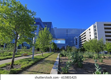 NEW PARKLAND HOSPITAL, DALLAS 4-5-2017: Parkland remains one of the busiest public hospitals in the nation, with more than 1 million patient visits each year