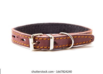 New pet collar isolated on white