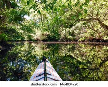 New Port Richey, Florida, USA - Nov. 30, 2015: A kayaker enjoys the peace of the Pithlachascotee River at James E. Grey Preserve north of Tampa. Manatees and otters are common visitors to the park.