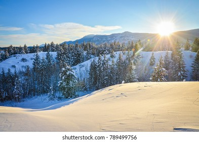 New Snow in the foothills of Fairmont Hot Springs, British Columbia. Purcell Mountains at sunset