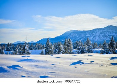 New Snow in the foothills of Fairmont Hot Springs, British Columbia. Purcell Mountains landscape