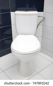 New toilet bowl with a tank in the bathroom
