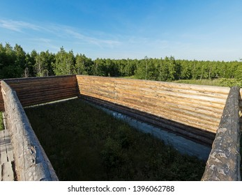 New wooden blockhouse. Construction of a house or dwelling. Walls of round treated pine trunks. On a background of forest and blue sky