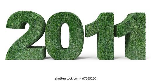 New Year 2011 - 3d illustration