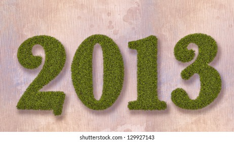new year 2013 grass text on abstract background