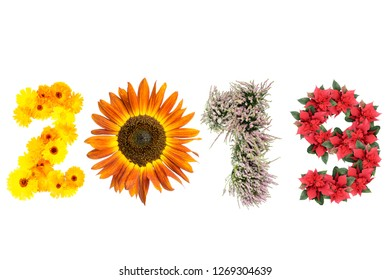 New Year 2019 date arranged from marigold flowers, sunflower, heather and poinsettia representing four season of the year