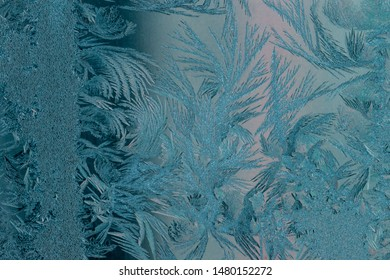 New Year and Christmas abstract icy frost cold weather snowy blue background with real ice crystals macro