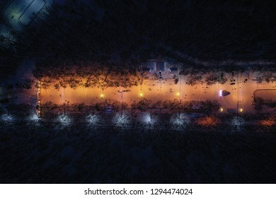 new year forest Park Ryazan