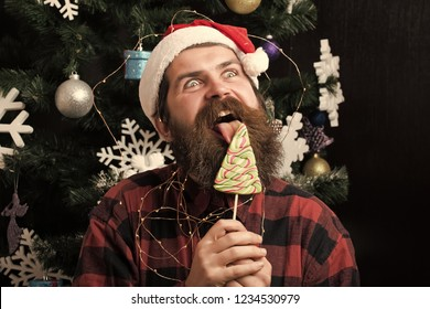 New year guy lick candy or sweet. Christmas man with beard on happy face and lollipop. Winter holiday and xmas. santa claus man in hat at decoration. Party celebration and blowjob.