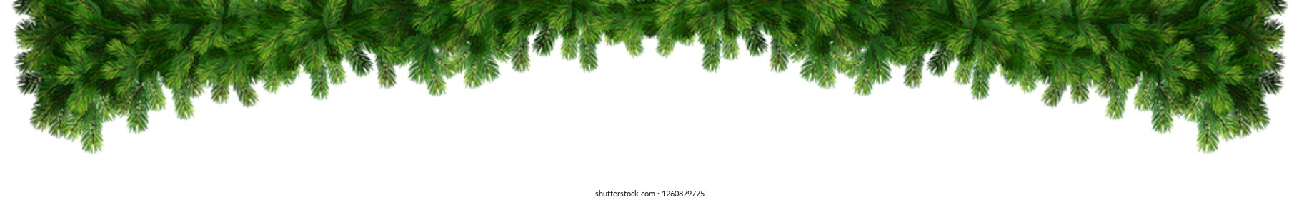 New year holiday decoration element. Decorative isolated border from a Christmas tree branches