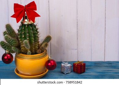 New Year in tropical hot climate concept. Cactus as christmas tree with toy and gift boxes. Studio Photo