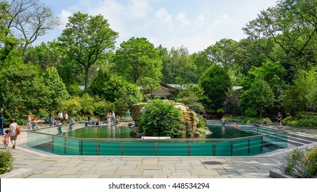 New York, New York - 4 June 2016: Sea Lion Pool at Central Park Zoo, New York City.