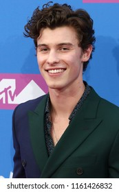 NEW YORK - AUGUST 20, 2018: Shawn Mendes attends the MTV Video Music Awards at Radio City Music Hall on August 20, 2018, in New York.