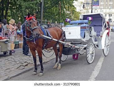 NEW YORK - CIRCA SEPTEMBER 2015. While horse-drawn carriages draw tourists, there is a movement to ban them, citing animal cruelty and inhumane treatment of the horses, as well as being unsanitary.