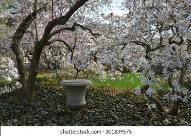 NEW YORK CITY - APRIL 21, 2014: Brooklyn Botanic Garden on a Spring day, New York City, USA.