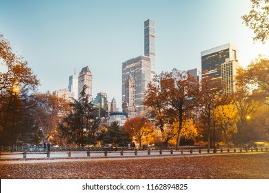 NEW YORK CITY IN AUTUMN SUN LIGHT
