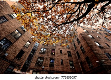 NEW YORK CITY - NOVEMBER 26 2017: Views of New York City Housing Authority residences: Queensbridge, North America's largest public housing development