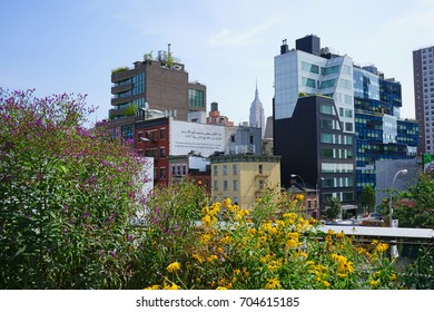 NEW YORK CITY, NY -27 AUG 2017- View of the High Line, an elevated green urban park running along old rail track lines in the Meatpacking District and Chelsea to 34th Street in New York City.