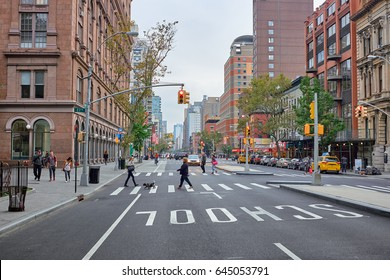NEW YORK CITY - OCTOBER 02, 2016: Woman with a dog on a leash crossing 3rd Avenue with SCHOOL painted on the asphalt